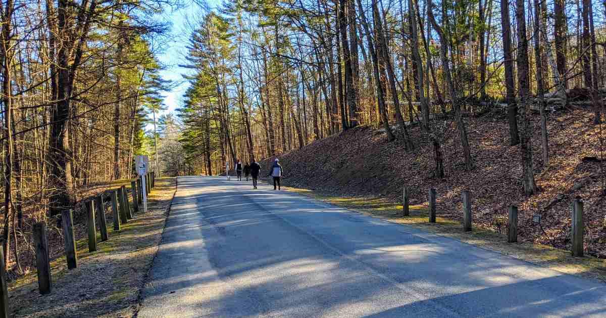 paved trail through a park
