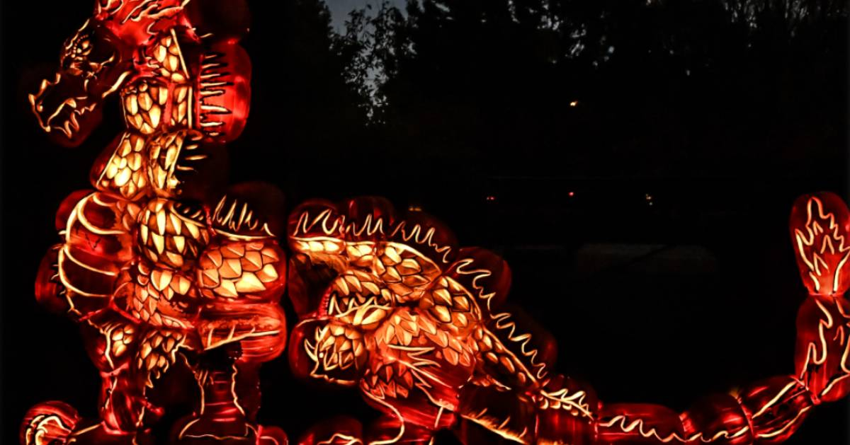 glowing orange dragon