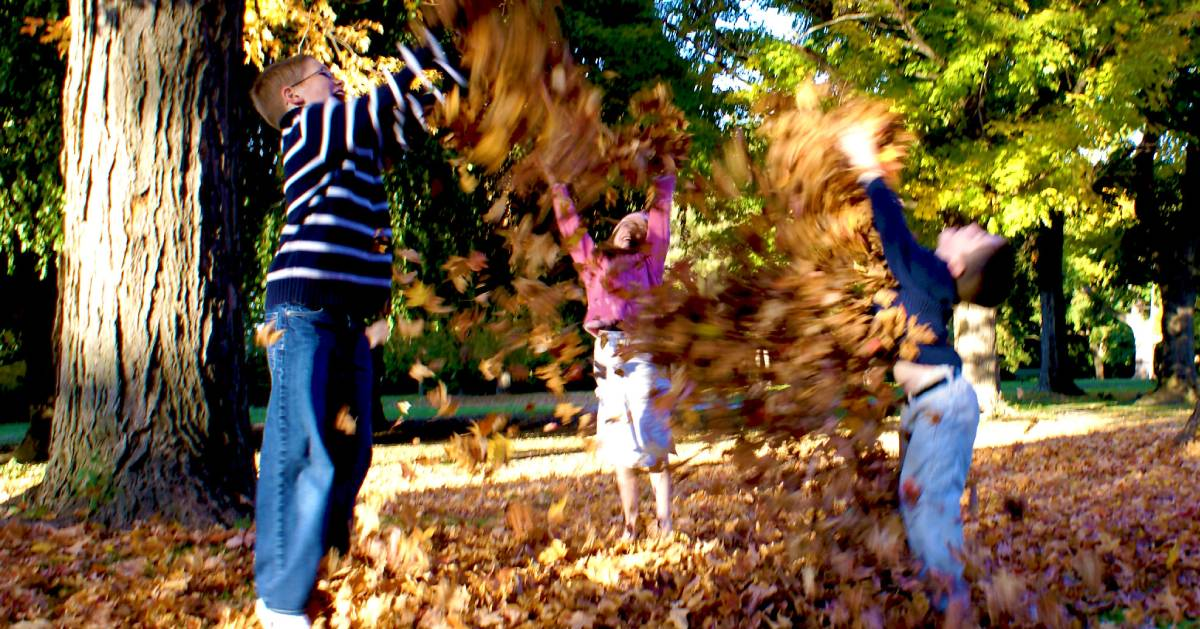 three kids playing with leaves