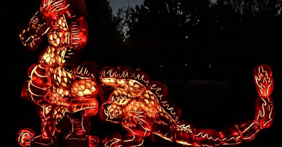 a glowing orange pumpkin display shaped like a dragon