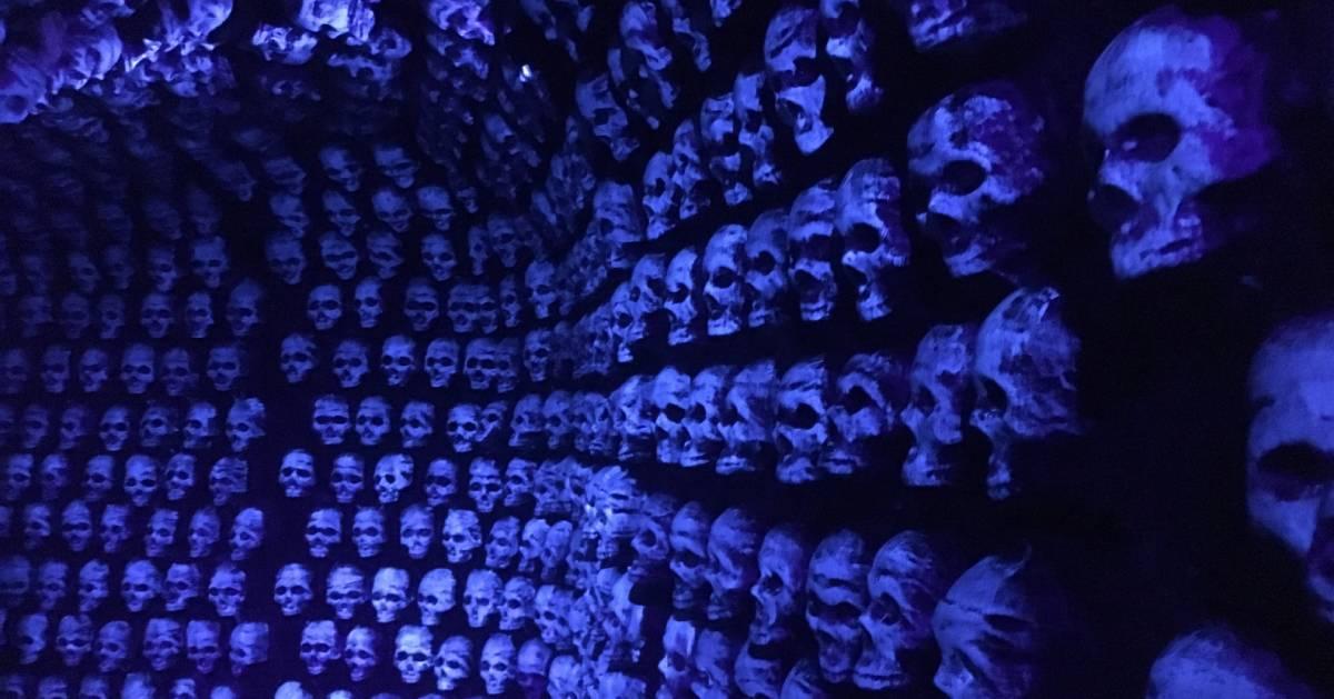 spooky skulls on a wall