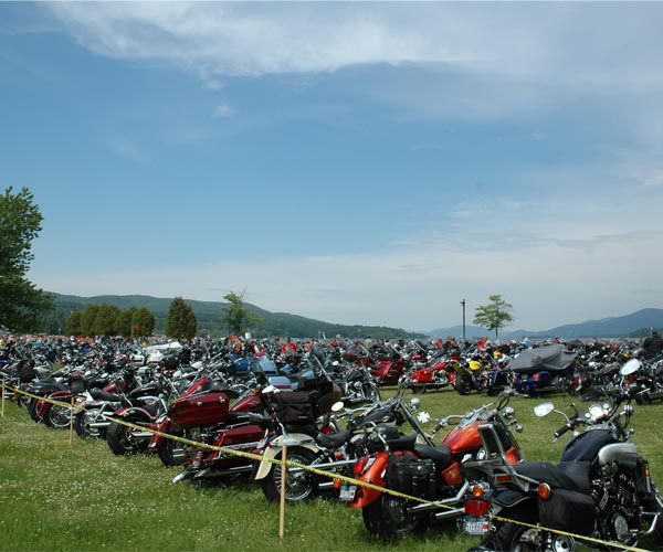 Motorcyles parked on the grass