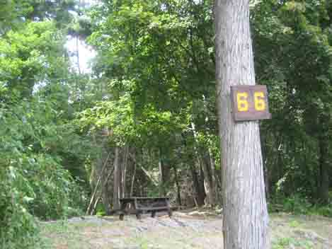 Long Island campsite Number 66