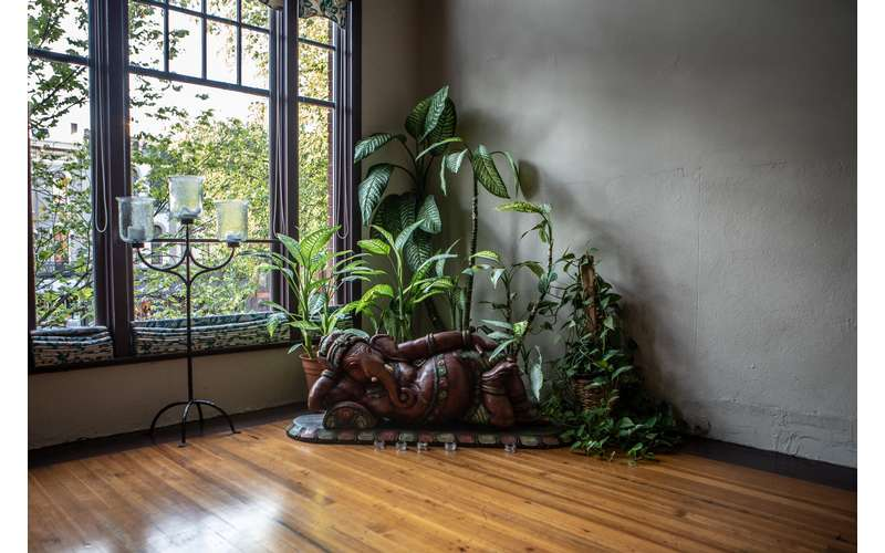 plant and statue in the corner of a room