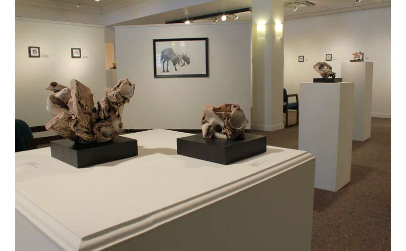 Lapham Gallery Exhibit, Naturally Scene