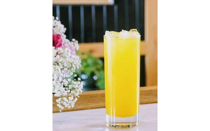 yellow cocktail in tall glass