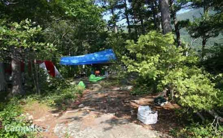 a small campsite area set up in the woods with a blue tarp on top