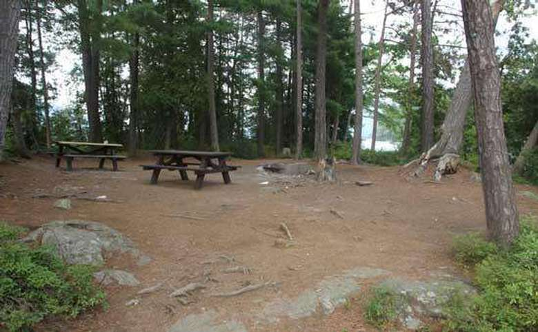 two picnic tables at a spacious campsite area in the woods