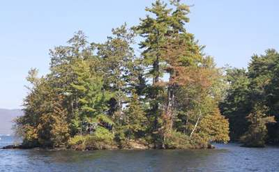 an island with trees with some light fall foliage