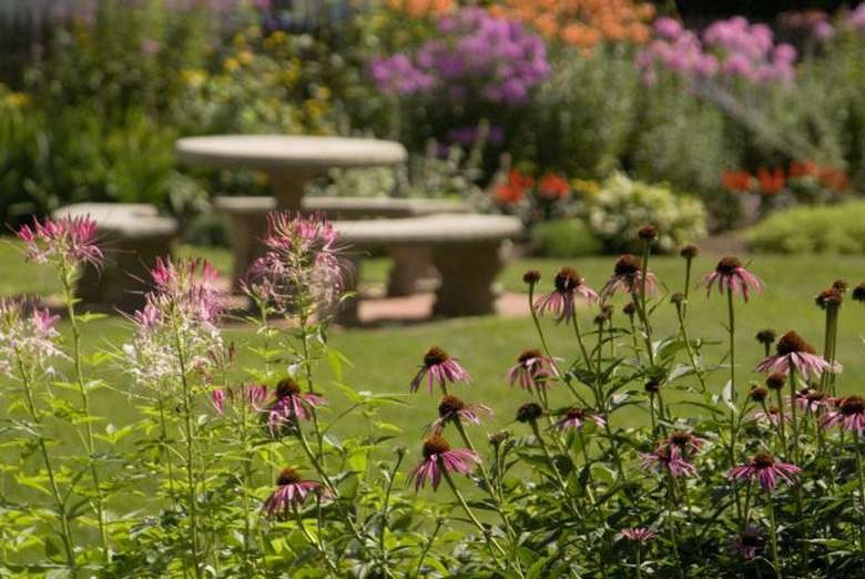 flowers in the foreground, a garden and an outdoor table in the background