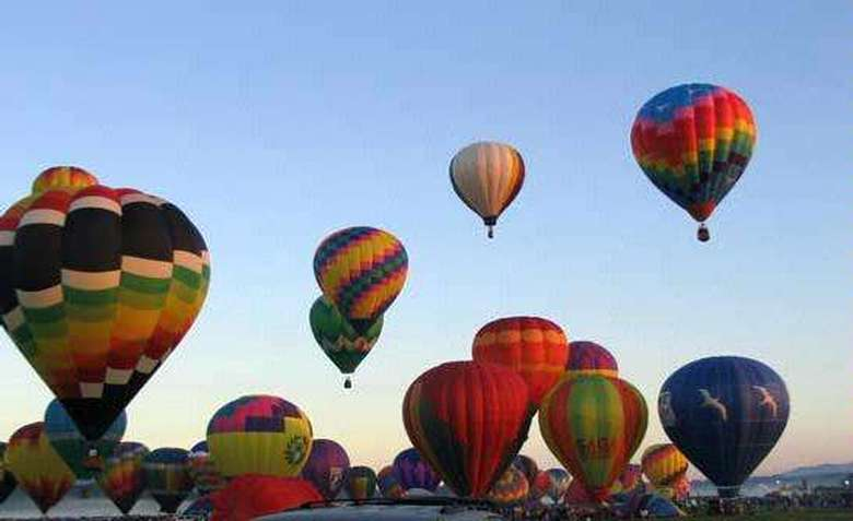 dozens of hot air balloons getting ready to launch at once