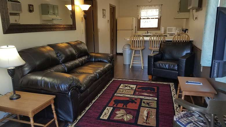 well furnished living room with Adirondack-themed rug