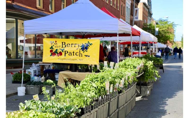 Troy Waterfront Farmers Market (3)