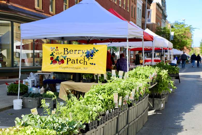 white vendor tent with a berry patch banner