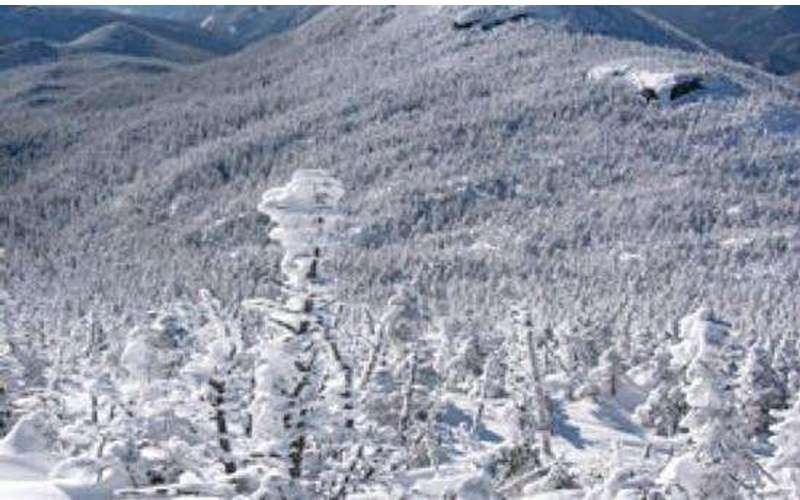 Gray Peak (2)