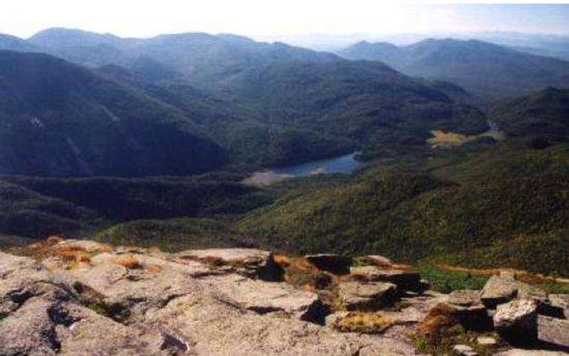 Mount Colden (4)