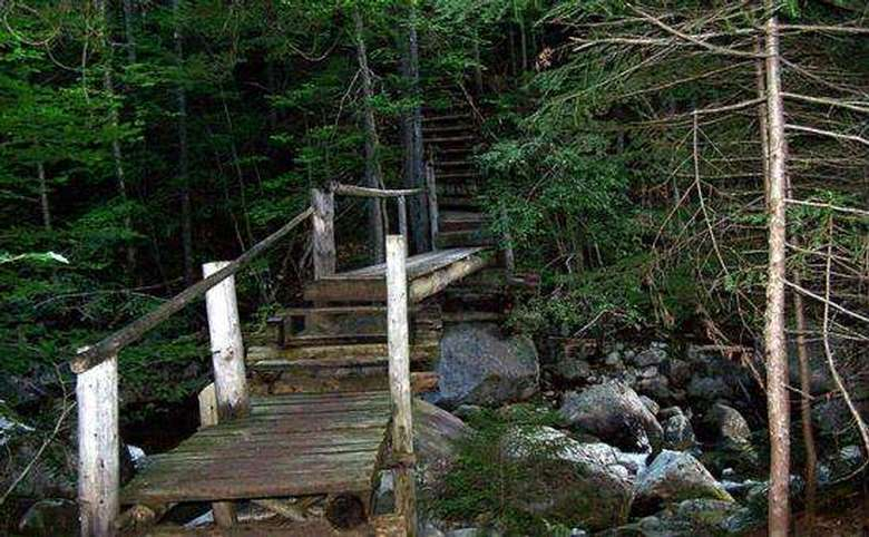 wooden bridges and stairs