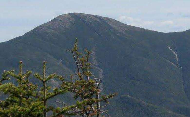 tall mountain with some pine trees in the foreground
