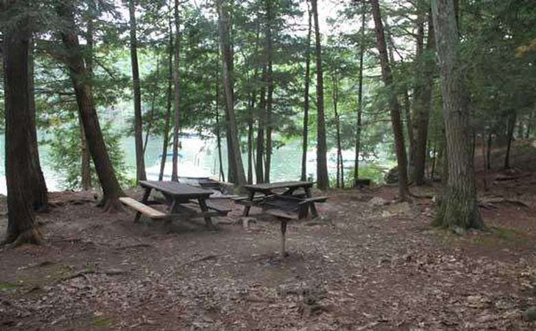 a campsite covered with leaves and there are two picnic tables