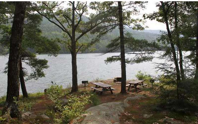 trees and picnic table overlooking views of the lake