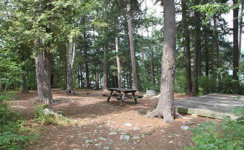 a campsite in the woods with a picnic table and some trees around