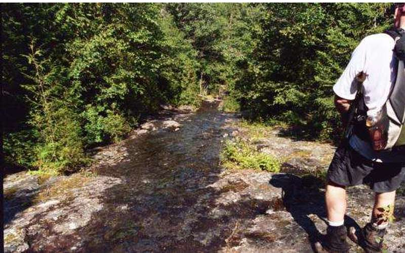 Seymour Mountain (8)