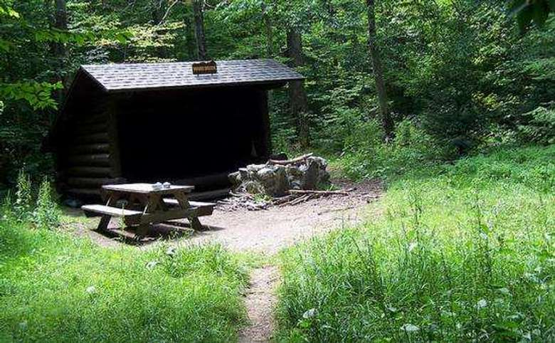 log lean-to with a picnic table and firepit in a clearing