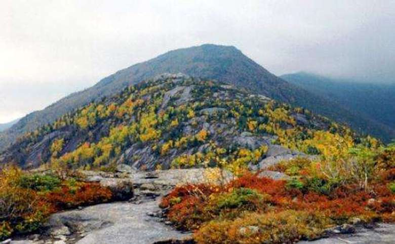 colorful foliage on a mountain's summit
