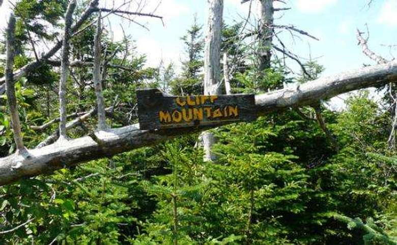cliff mountain sign mounted to a limb