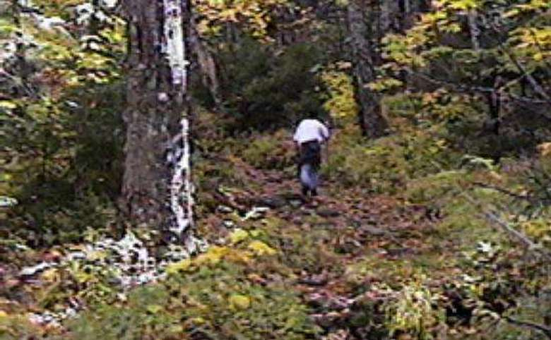 hiker climbing up a trail