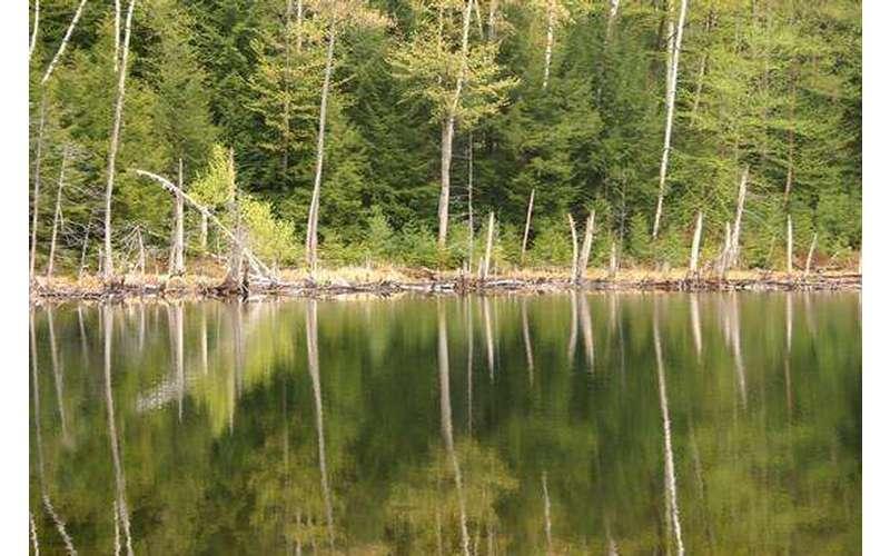 Pharaoh Lake Wilderness (1)