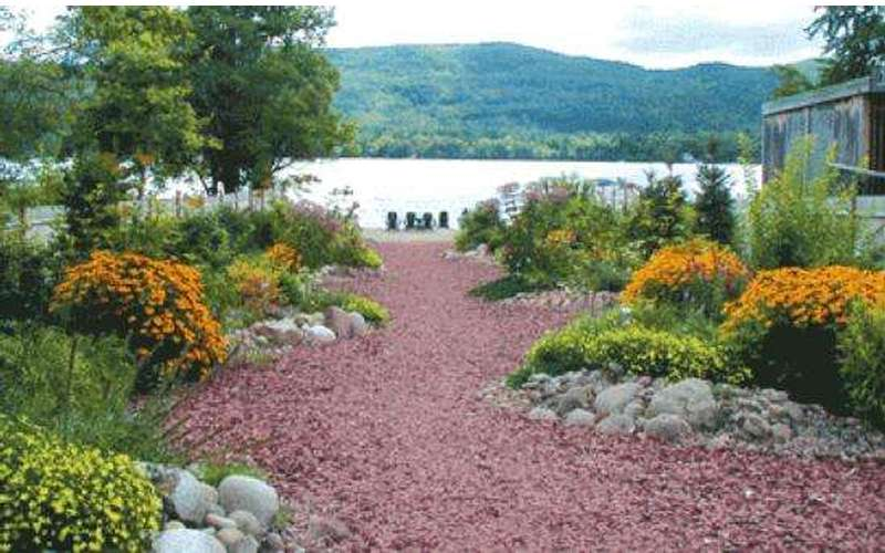 A garden on the shore of Lake George featuring orange flowers and reddish-brown mulch