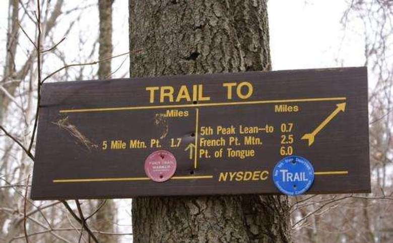 trail sign nailed to a tree showing the red and blue trails
