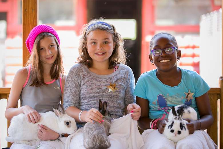 Three girls holding bunnies