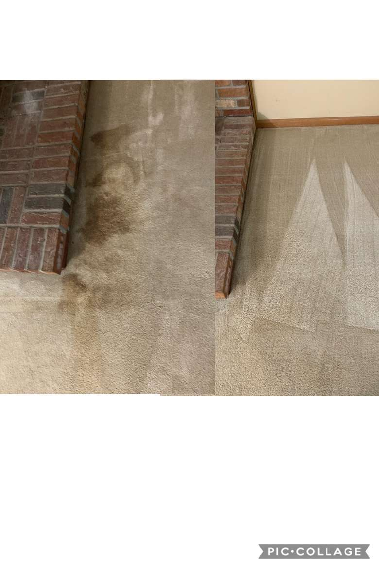 Before and After using the Host Carpet Cleaning System