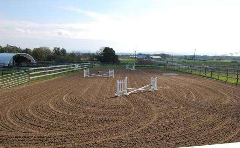 horse jumping arena