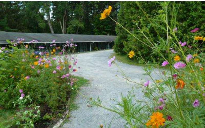 the Saratoga Garden Motel &the Garden Therapeutic Services (6)
