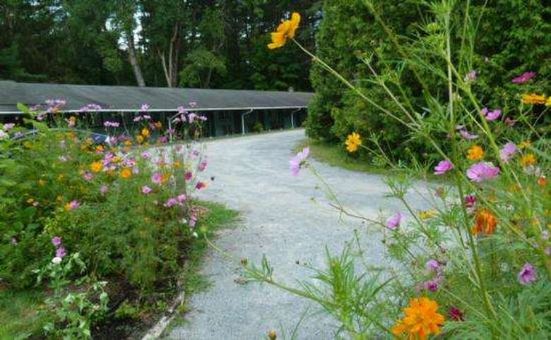 the Saratoga Garden Motel &the Garden Therapeutic Services (6)