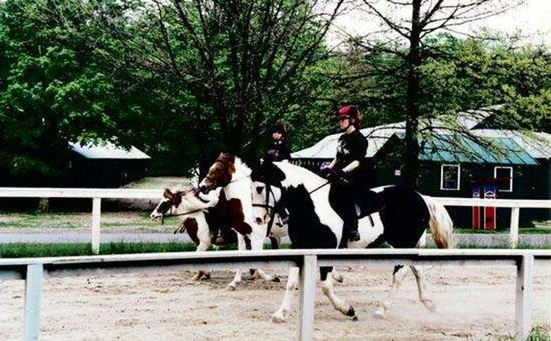 three people riding black/brown and white horses