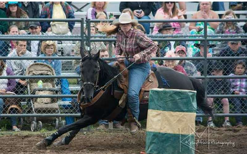 Painted Pony Championship Rodeo (4)