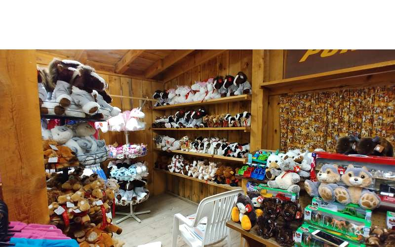 a gift store with stuffed animals and more