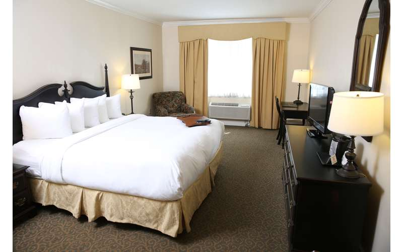 Relax in our luxurious hotel rooms