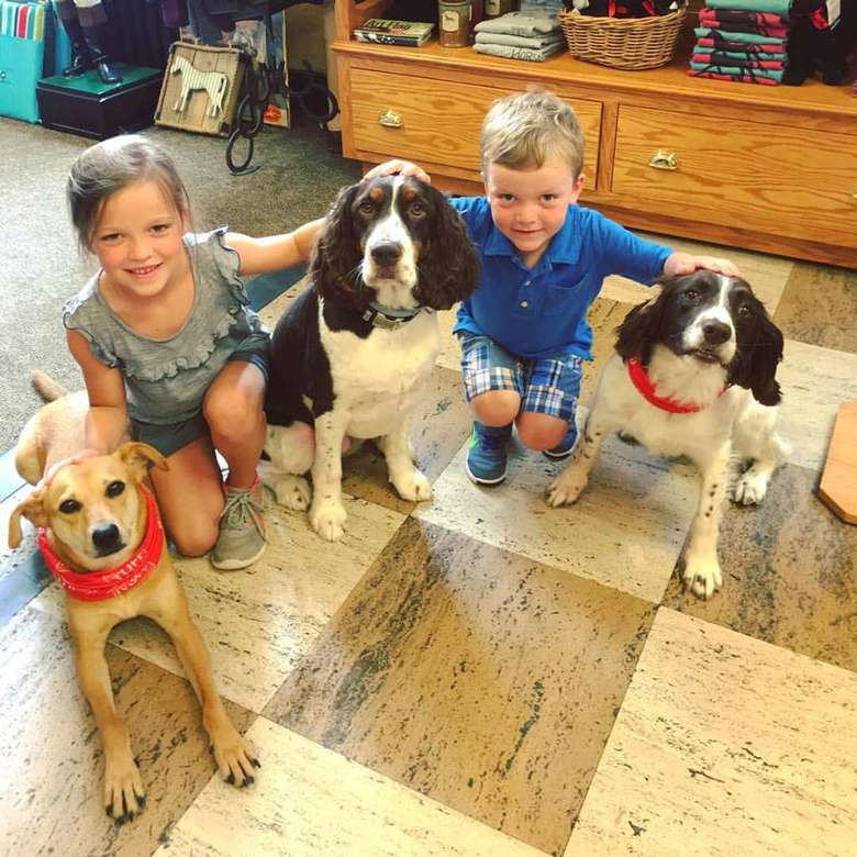 two kids posing with three dogs