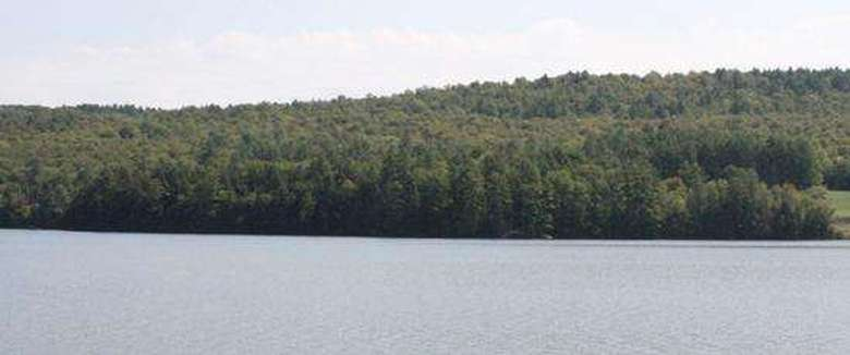 brant lake in summer