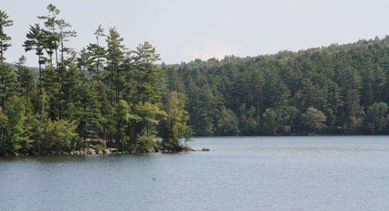 view of island in brant lake