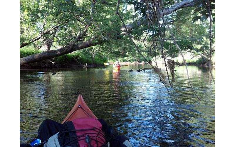 Saranac River (2)