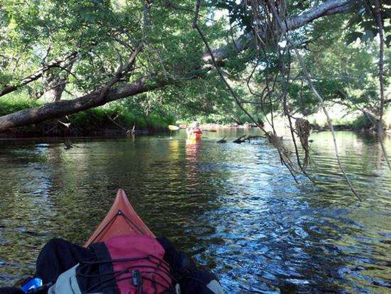 view of saranac river taken from seated position in kayak