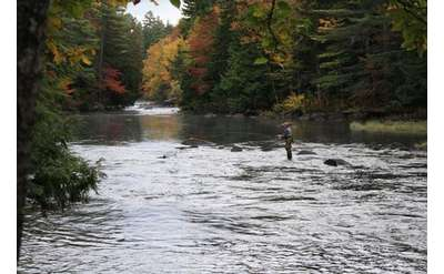 fly fisherman fishing in the waters of indian river during early fall foliage