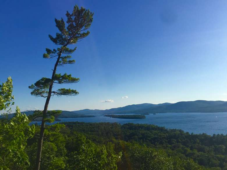 view of lake george from stewarts ledge on a sunny day with an iconic leaning tree on the left side