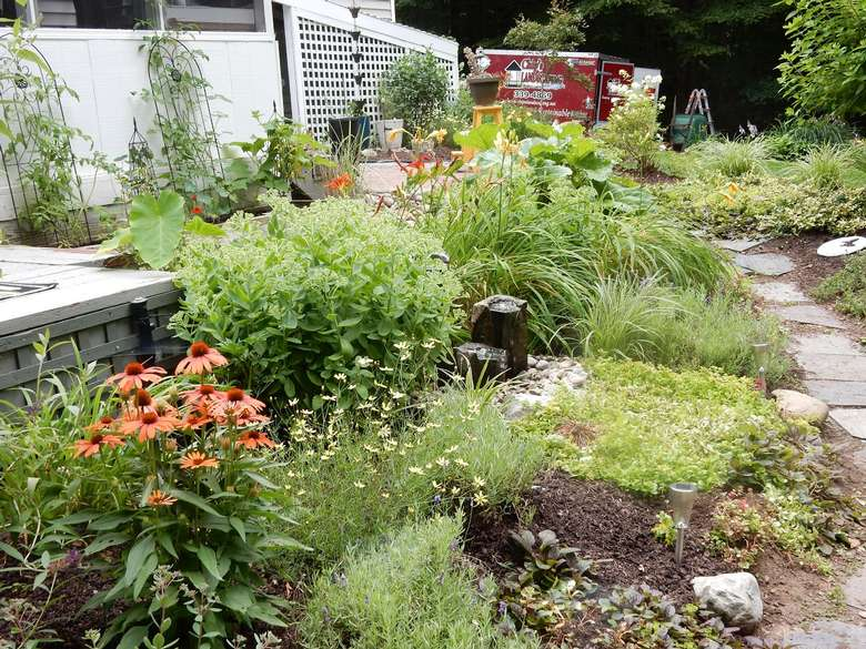 landscaped area in a yard with lots of wild flowers and other plants